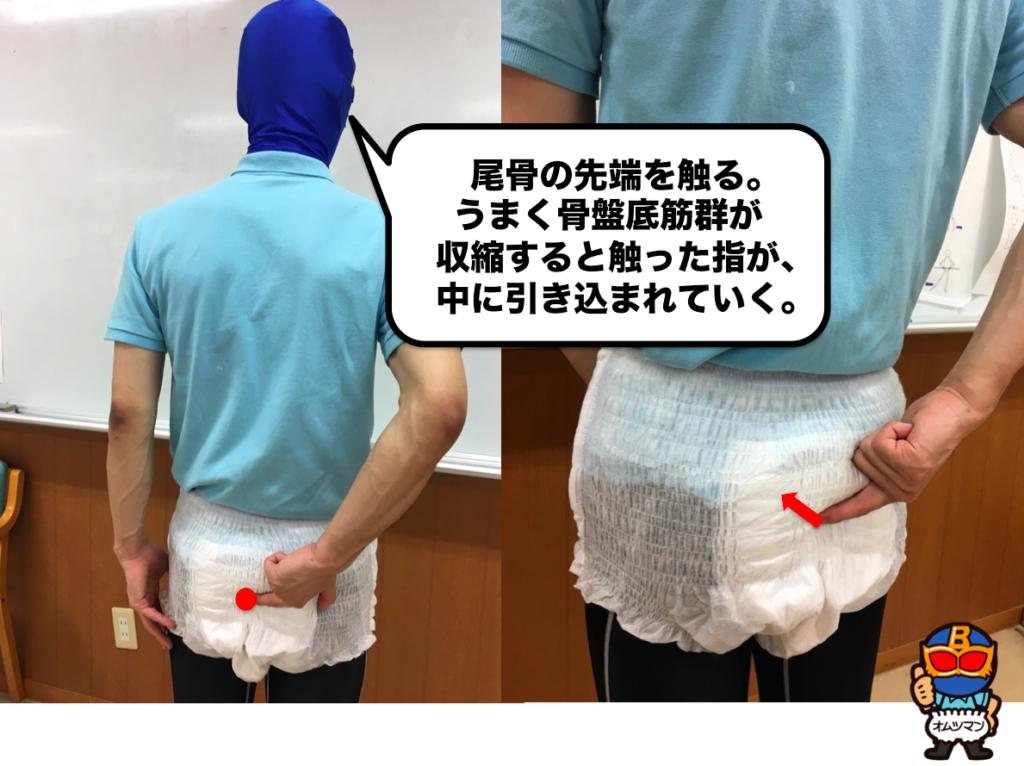 骨盤底筋 触診 鍛え方 会陰体 尾骨の触診